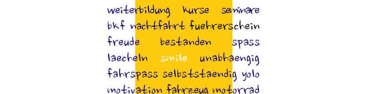 Fahrschule Smile